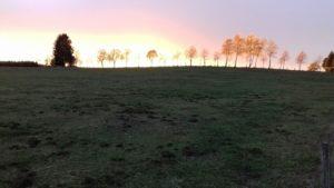 EVPMC-2019 : 12th European Vertebrate Pest Management Conference @ VetAgro Sup – campus agronomique   Lempdes   Auvergne-Rhône-Alpes   France