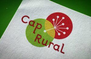[WebConférence] Incubateurs ruraux : ancrage local et complémentarités avec les autres dispositifs