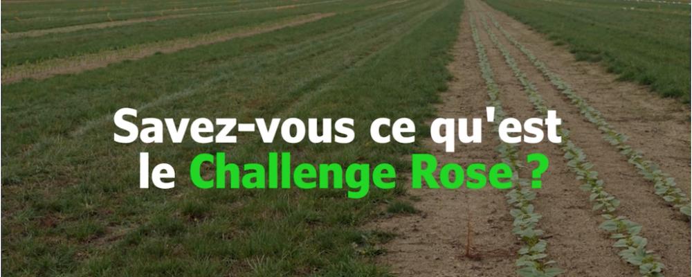 Agtech : Le challenge rose : l'innovation face aux herbicides