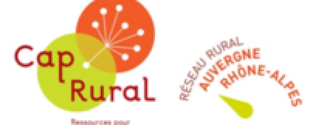 [EN LIGNE] Réseaux, territoires et développement local (1/2) : comprendre leurs interactions