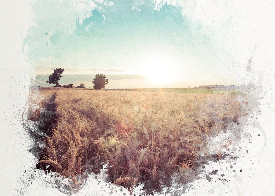 [EN LIGNE] Refonder l'agriculture à l'heure de l'Anthropocène : un nouveau regard sur l'entreprise agricole @ EN LIGNE