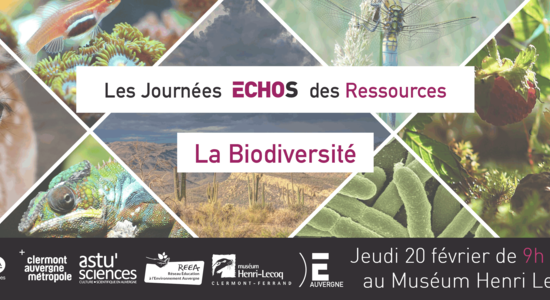 Journée « Biodiversité » Echos des ressources @ Muséum Henri Lecoq | Clermont-Ferrand | Auvergne-Rhône-Alpes | France
