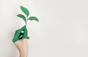 Quelles transitions agro-écologiques ? Enjeux, initiatives et leviers du changement @ VetAgro Sup | Lempdes | Auvergne-Rhône-Alpes | France